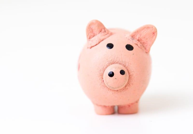 Donate Piggy